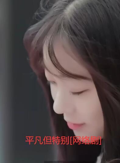 平凡但特别(日韩剧)