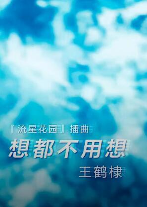 想都不用想 电视剧新版《流星花园》插曲 -- 王鹤棣