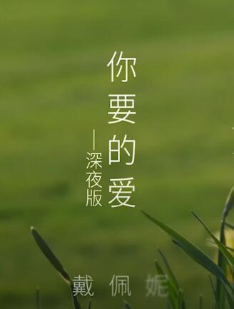 你要的爱[深夜版] 电视剧《流星花园》插曲 -- 戴佩妮
