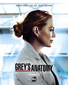 实习医生格蕾第十七季/实习医生格蕾第17季