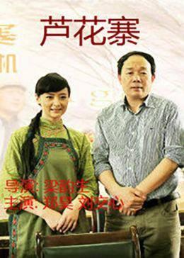 芦花寨(战争片)