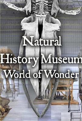 英国自然历史博物馆:神奇世界第一季(纪录片)