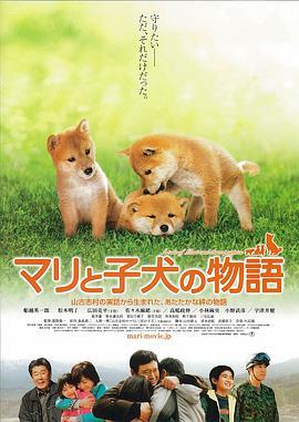 说电影《爱犬的奇迹》