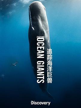 追踪海洋巨兽
