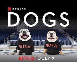爱犬情深第二季/爱犬情深第2季