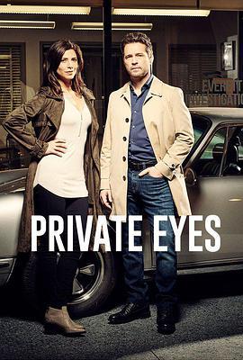 私家侦探第五季/私家侦探第5季